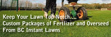 fertlizer and lawn over seed