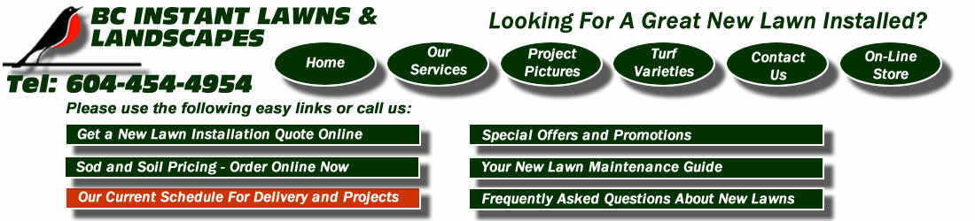 Top Soil For Sale From Bc Instant Vancouver Turf Blend Soil Garden Soil Lawn Dressing Supplier Near Vancouver Lower Mainland